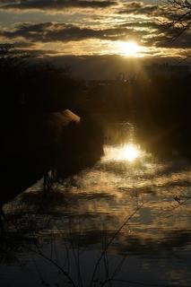 川に写る.jpg